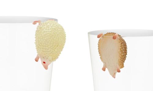 咦?原来这不是榴槤啊!就是要刺在你杯子上的刺猬杯缘子