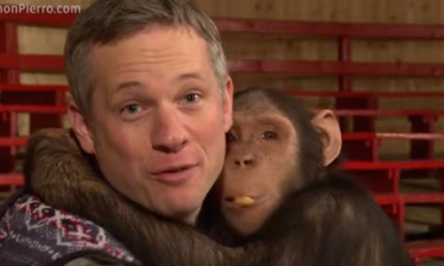 是什么让黑猩猩傻眼大崩溃?一起来看看「花生省魔术」吧