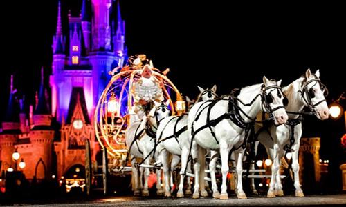 600万的豪华婚礼!把整个迪士尼包下来实现一生一次公主梦