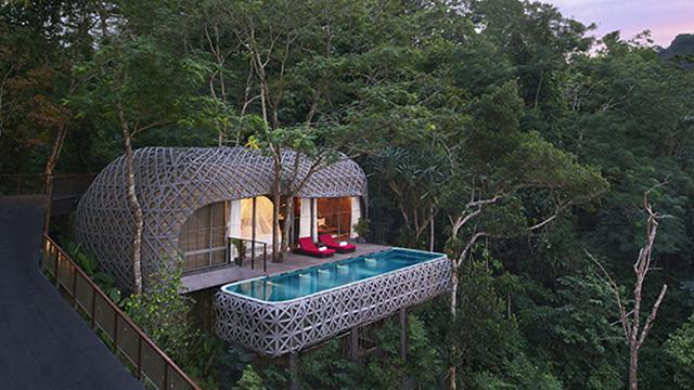 住在树上真的超梦幻!全世界都在疯的10大绝美树屋饭店