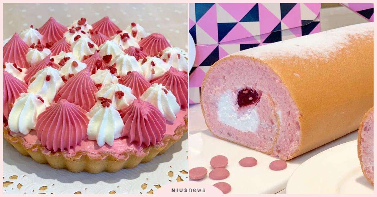 亚尼克最梦幻的生乳捲!「红宝石巧克力」、「粉红露比」少女心粉嫩登场♡
